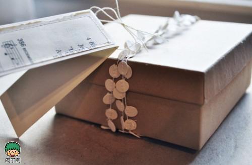 牛皮纸盒包装欣赏
