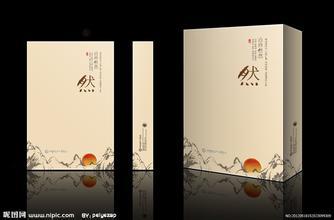 深圳皇狮品牌设计公司
