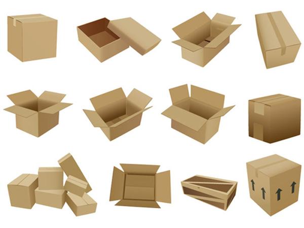 全方位绿色纸箱盒展示设计